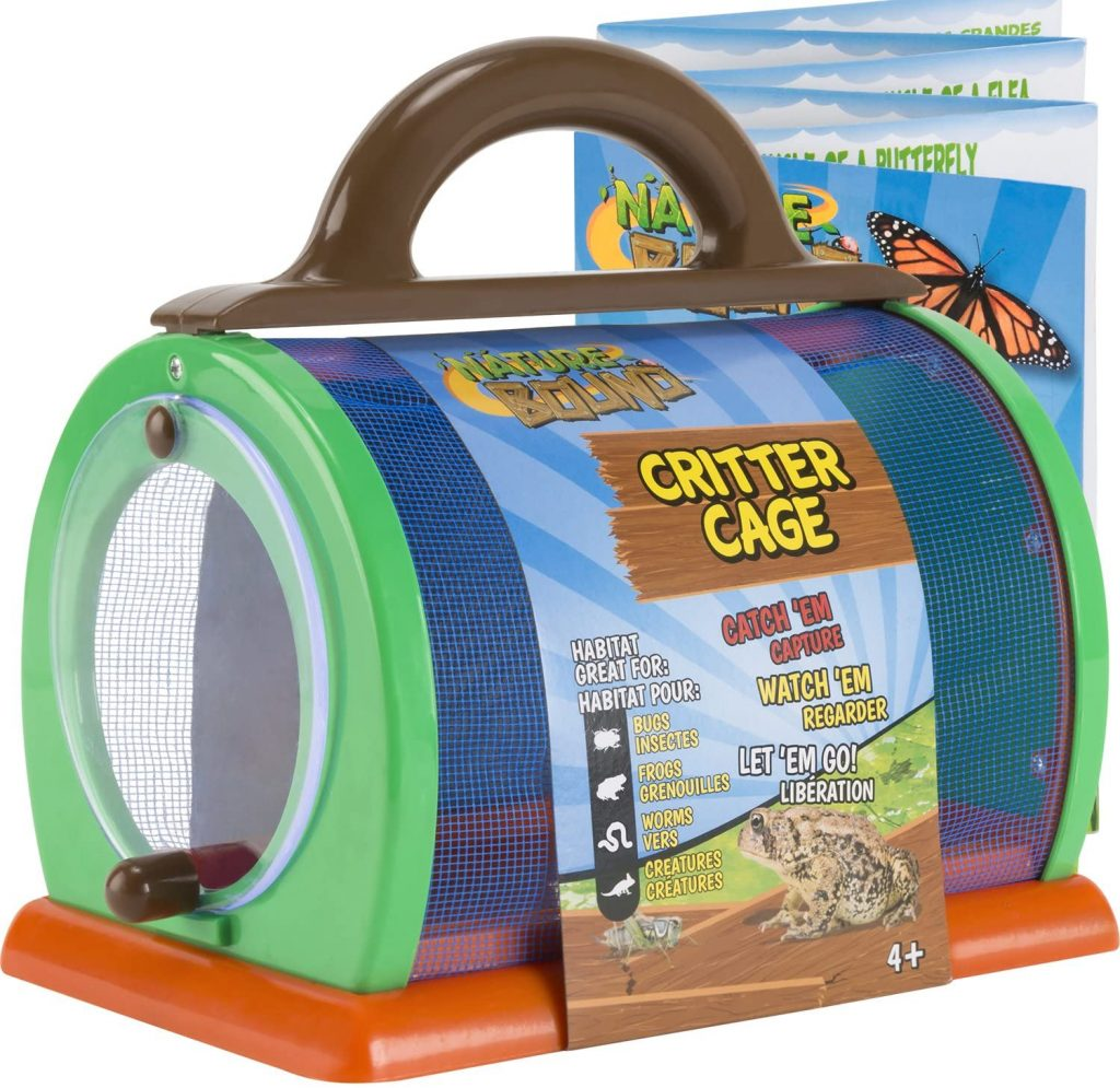 critter cage bugs